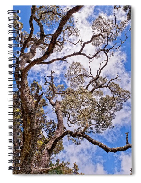 Spiral Notebook featuring the photograph Hawaiian Sky by Jim Thompson