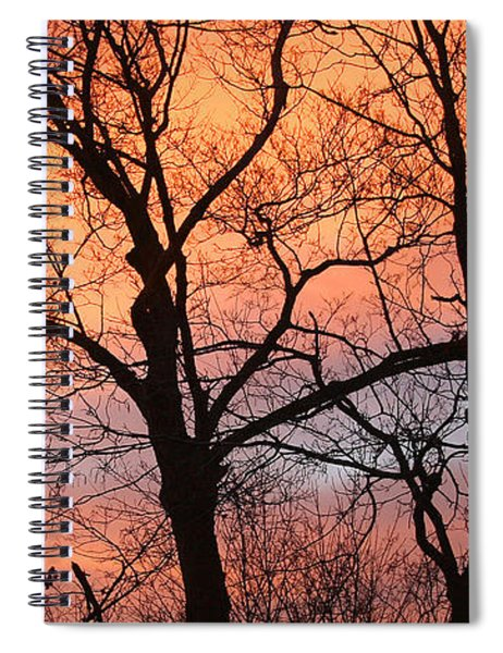 Hawk At Sunrise Spiral Notebook