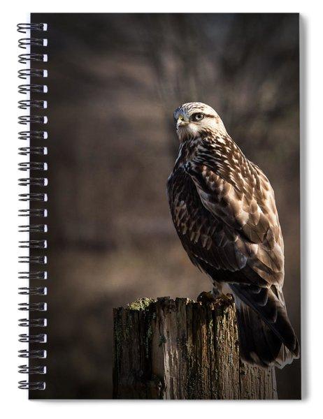 Hawk On A Post Spiral Notebook