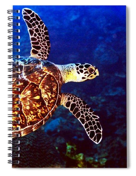 Hawksbill Spiral Notebook