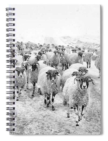 Heading For Home Spiral Notebook