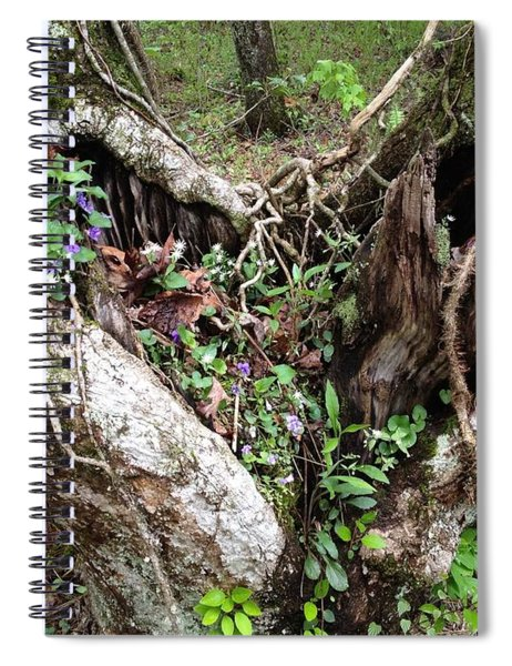 Spiral Notebook featuring the photograph Heart-shaped Tree by Jan Dappen