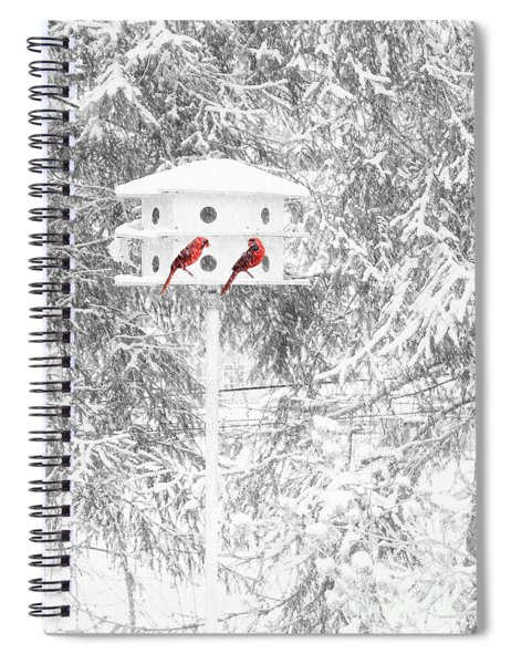 Snowbirds Spiral Notebook