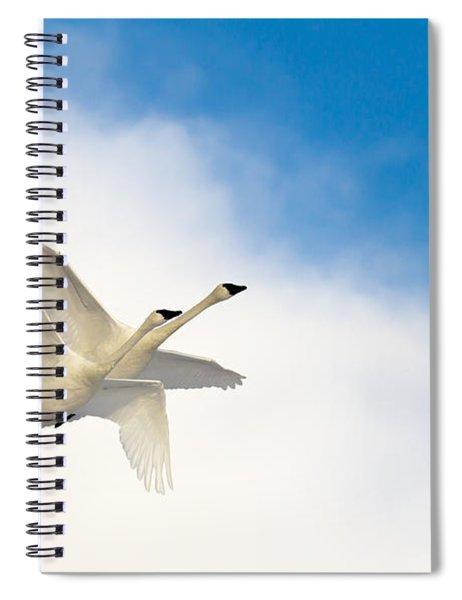 Heaven Born Spiral Notebook