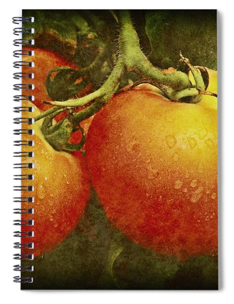 Heirloom Tomatoes On The Vine Spiral Notebook