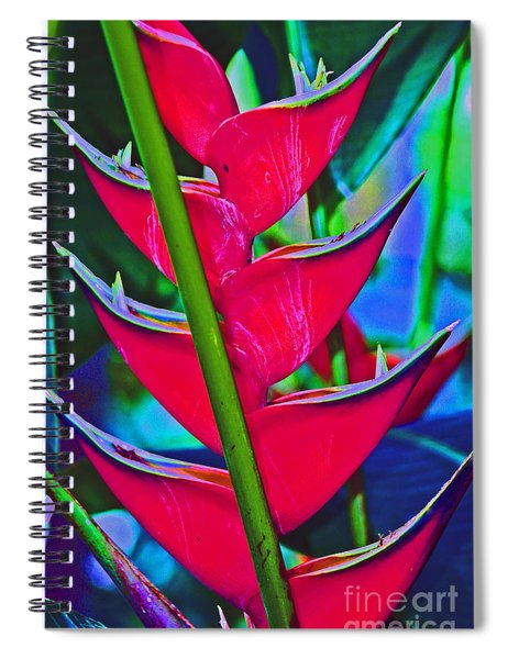 Heliconia Abstract Spiral Notebook