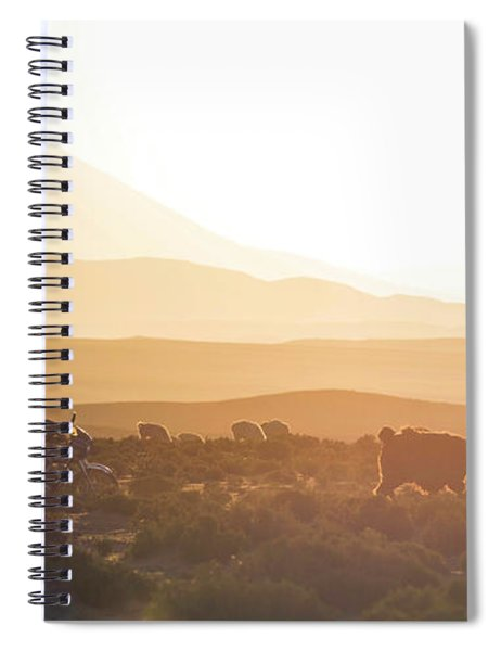 Herd Of Llamas Lama Glama In A Desert Spiral Notebook