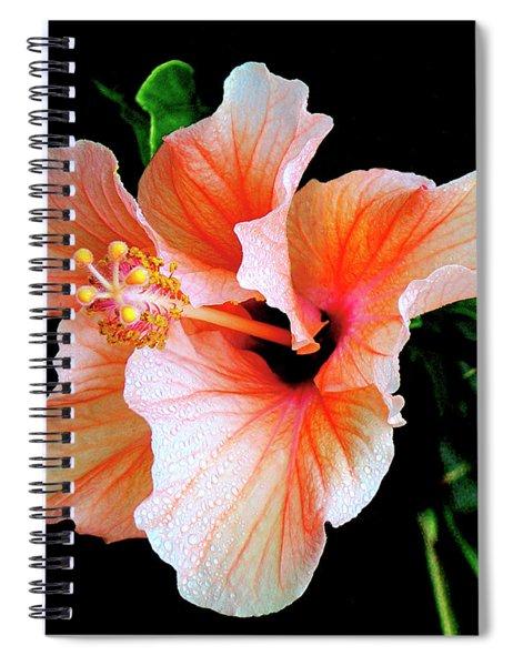 Hibiscus Spectacular Spiral Notebook