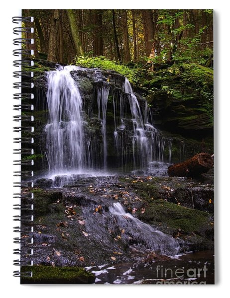 Hidden Waterfalls Of Wayne County I Spiral Notebook