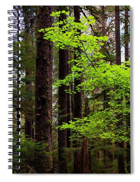Highlight Spiral Notebook