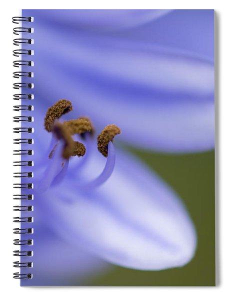 Highly Evolved Spiral Notebook