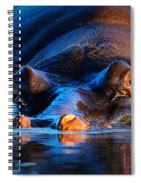 Hippopotamus  At Sunset Spiral Notebook