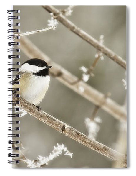 Hoarfrost Morning Spiral Notebook