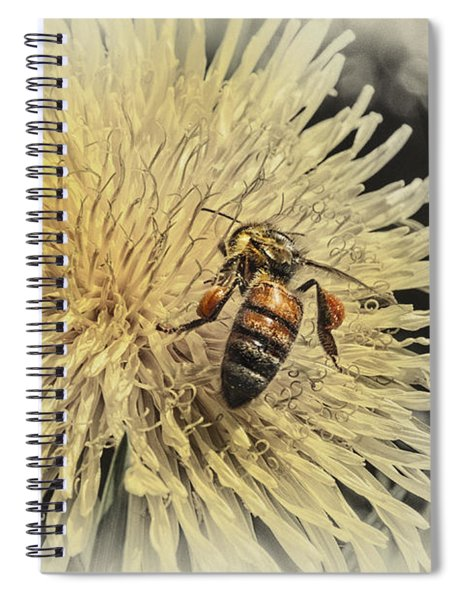 Honey Bee Meets Dandy Lion Spiral Notebook