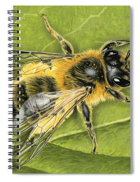 Honeybee On Leaf Spiral Notebook