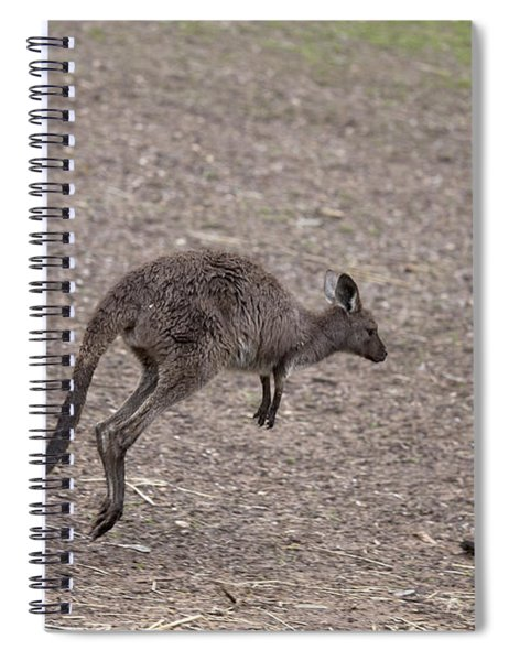 Hop Spiral Notebook