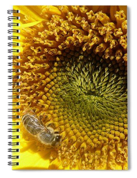 Hopeful - Signed Spiral Notebook