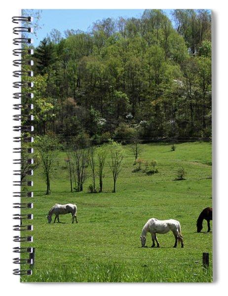 Horse 27 Spiral Notebook