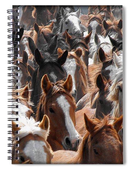 Horse Faces Spiral Notebook