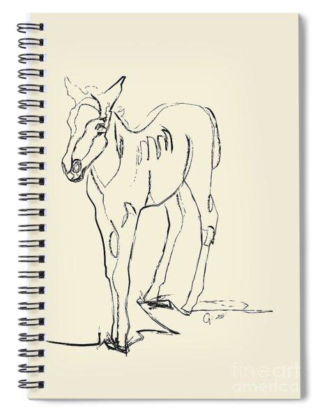 Horse- Foal -josje Spiral Notebook