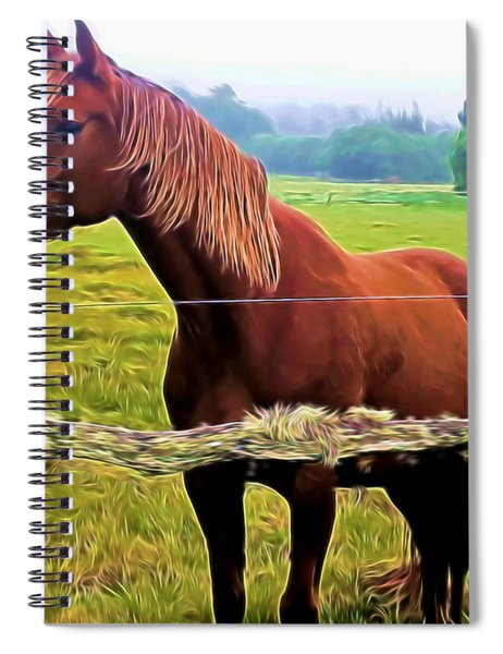 Horse In The Pasture Spiral Notebook