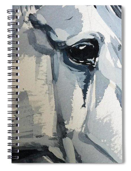 Horse Look Closer Spiral Notebook