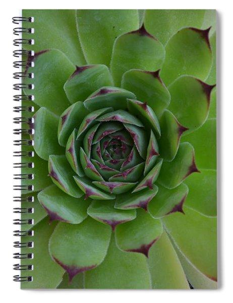 Spiral Notebook featuring the photograph Houseleek Sempervivum by Scott Lyons