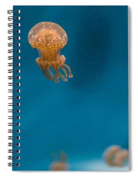 Hovering Spotted Jelly 2 Spiral Notebook
