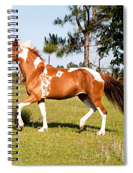 How Do I Look Spiral Notebook