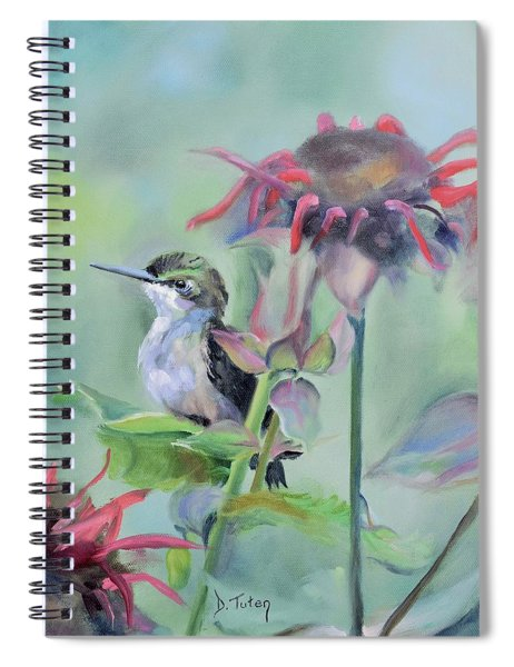Hummingbird And Coneflowers Spiral Notebook
