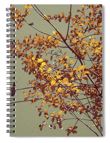 Hummingbirds On Yellow Tree Spiral Notebook