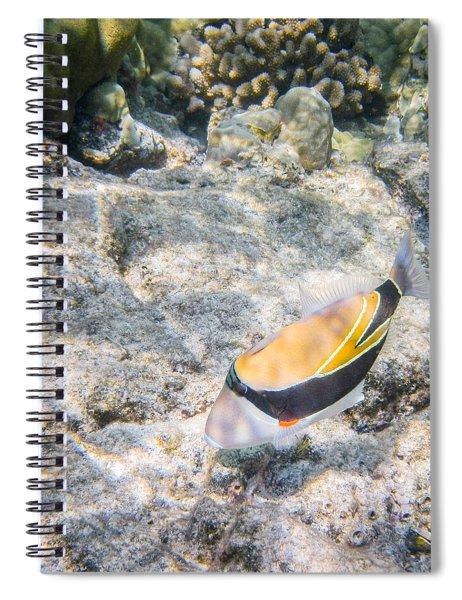 Humuhumunukunukuapua'a Spiral Notebook