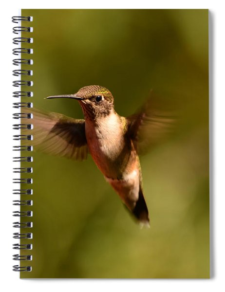 Hurry Up And Take My Picture Spiral Notebook