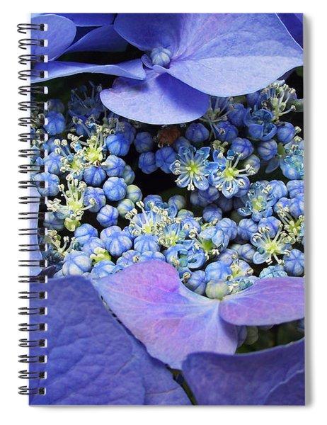 Hydrangea Blossom Spiral Notebook