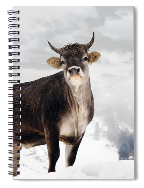 I Don't Like Snow Spiral Notebook