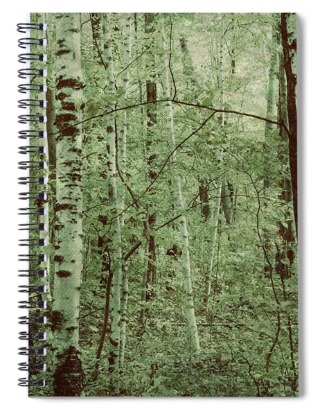 Dreams Of A Forest Spiral Notebook