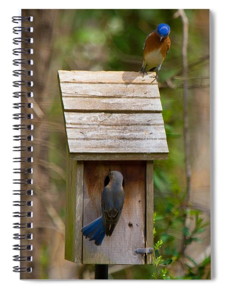 Spiral Notebook featuring the photograph I Think I Like This One Honey. You Have To See The Inside by Robert L Jackson