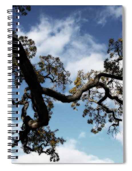 I Touch The Sky Spiral Notebook