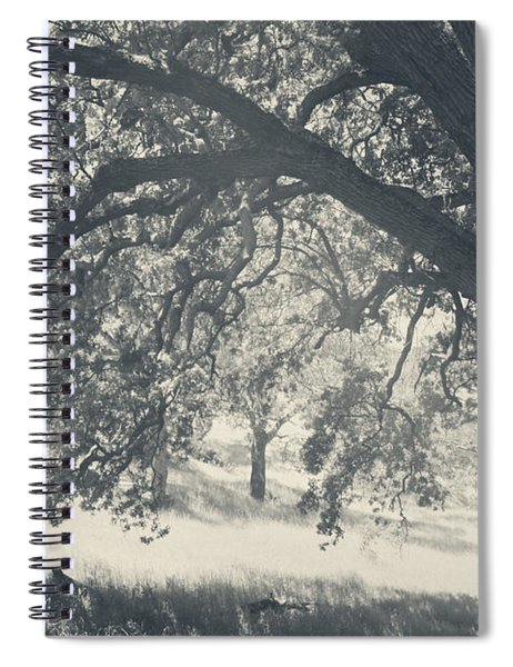 I Would Wrap My Arms Around You Spiral Notebook