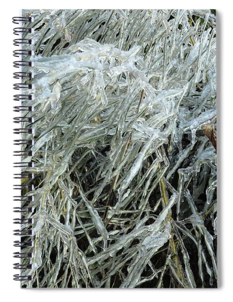 Ice On Bamboo Leaves Spiral Notebook