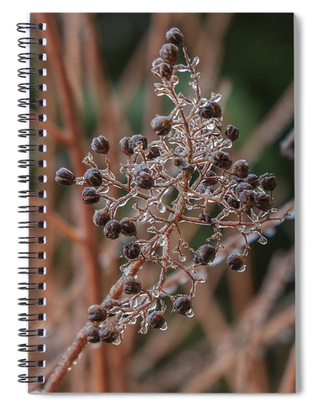 Ice On Berries Spiral Notebook