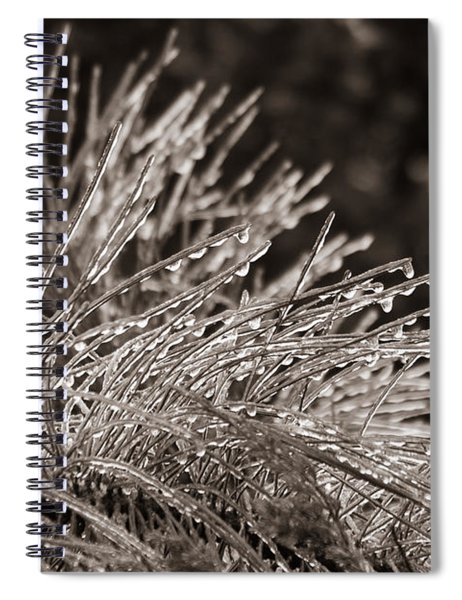 Ice On Pine Spiral Notebook