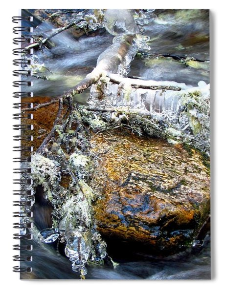 Ice Ornaments Spiral Notebook