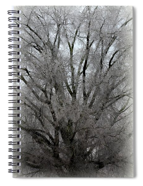 Ice Sculpture Spiral Notebook