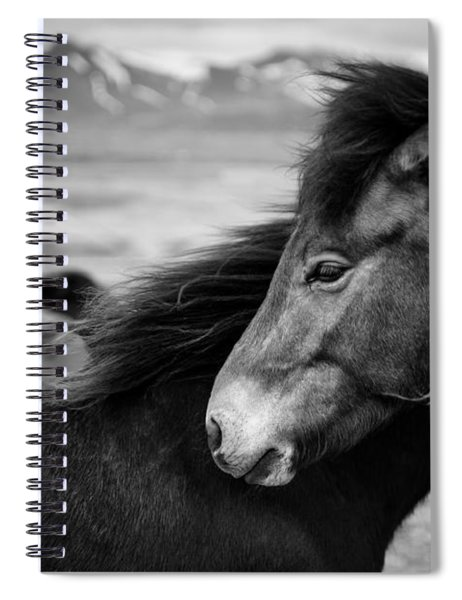 Icelandic Horses Spiral Notebook by Dave Bowman