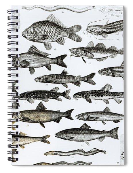 Ichthyology Spiral Notebook