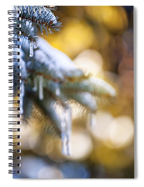 Icicles On Fir Tree In Winter Spiral Notebook
