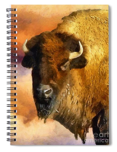 Icon Of The Plains Spiral Notebook