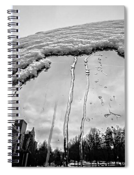 Icy Bean Reflection Spiral Notebook