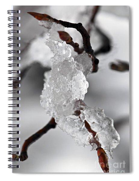Icy Elegance Spiral Notebook by Elena Elisseeva